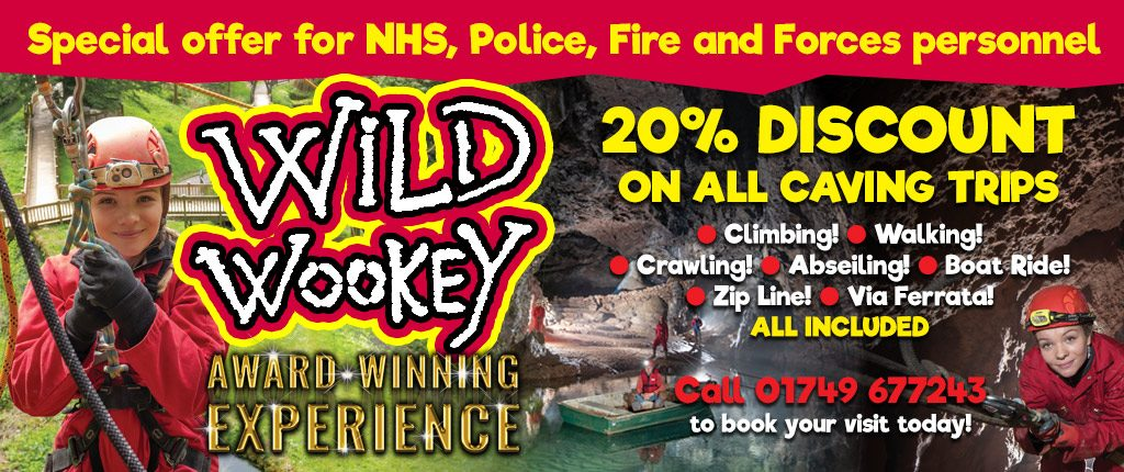 wild wookey forces offer 2019